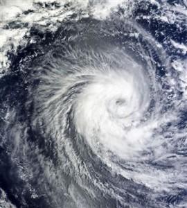 taifuu11