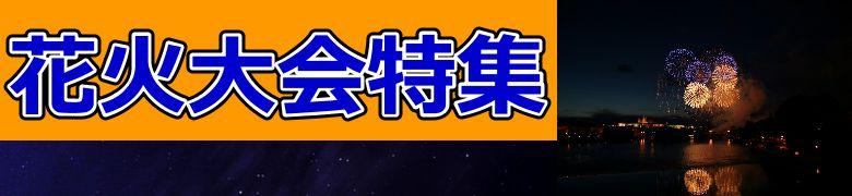 仙台七夕花火祭とは? 穴場情報と見所!