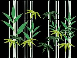bamboo-641814_640