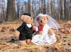 wedding-1034430_640